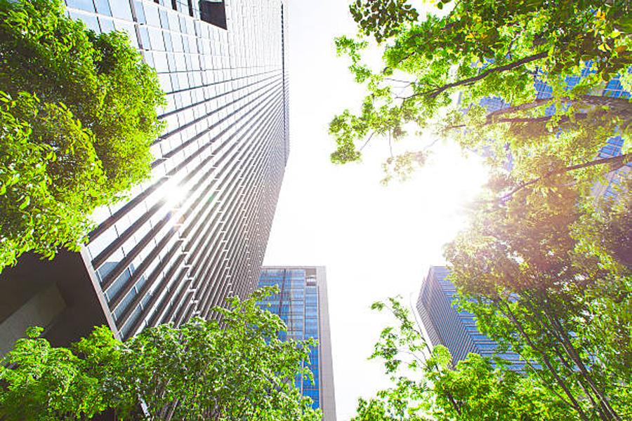 Tendências sustentabilidade Grupo Trio